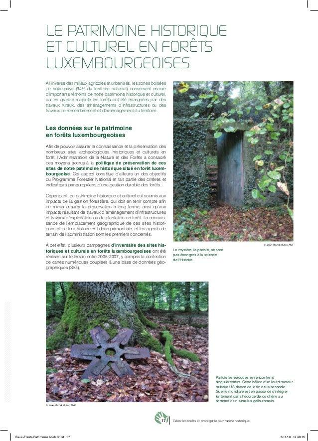 17 Gérer les forêts et protéger le patrimoine historique A l'inverse des milieux agricoles et urbanisés, les zones boisées...
