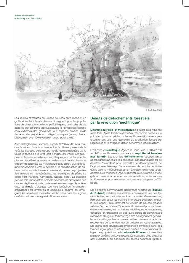 22 Les fouilles effectuées en Europe sous les abris rocheux, en grotte et sur les sites de plein air témoignent, pour les ...