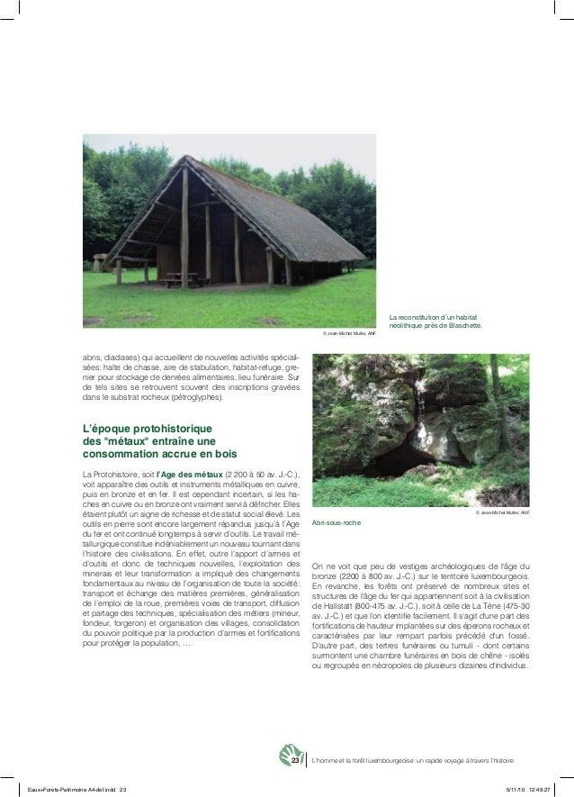 23 L'homme et la forêt luxembourgeoise: un rapide voyage à travers l'histoire abris, diaclases) qui accueillent de nouvell...