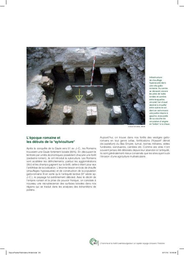 25 L'homme et la forêt luxembourgeoise: un rapide voyage à travers l'histoire Infrastructure de chauffage hypocauste dans ...