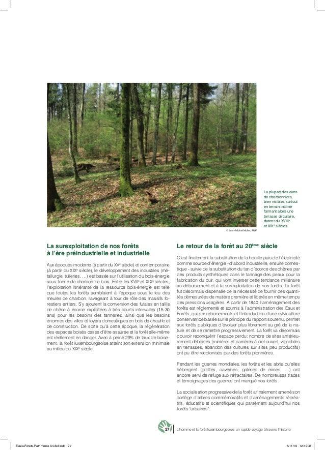 27 L'homme et la forêt luxembourgeoise: un rapide voyage à travers l'histoire La surexploitation de nos forêts à l'ère pré...
