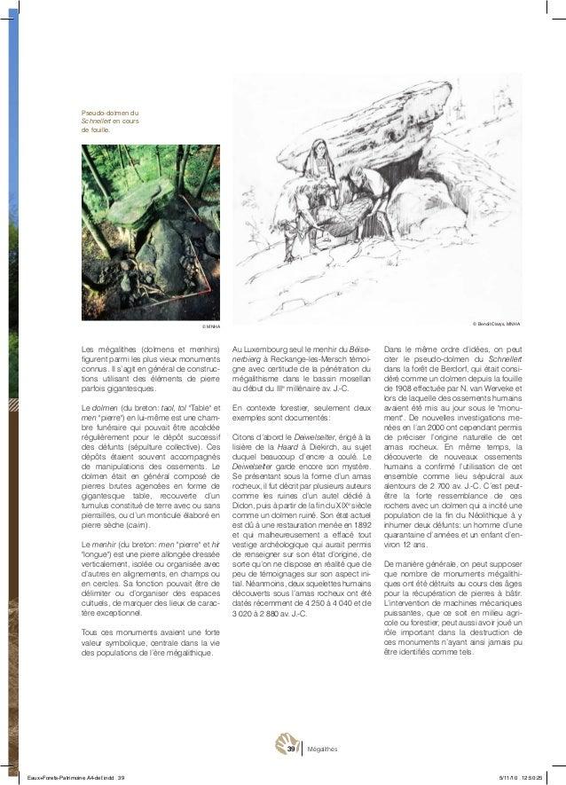39 Mégalithes Les mégalithes (dolmens et menhirs) figurent parmi les plus vieux monuments connus. Il s'agit en général de ...