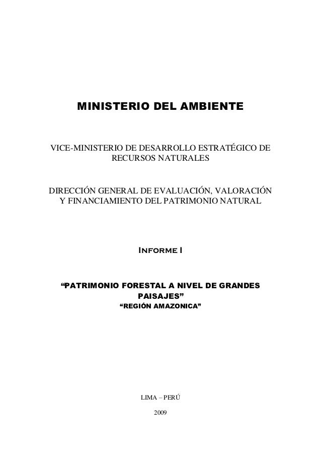 MINISTERIO DEL AMBIENTEVICE-MINISTERIO DE DESARROLLO ESTRATÉGICO DE             RECURSOS NATURALESDIRECCIÓN GENERAL DE EVA...