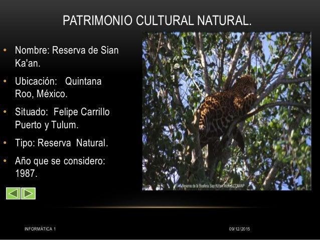Matrimonio Simbolico Bologna : Patrimonio natural de mexico pdf df cultural y