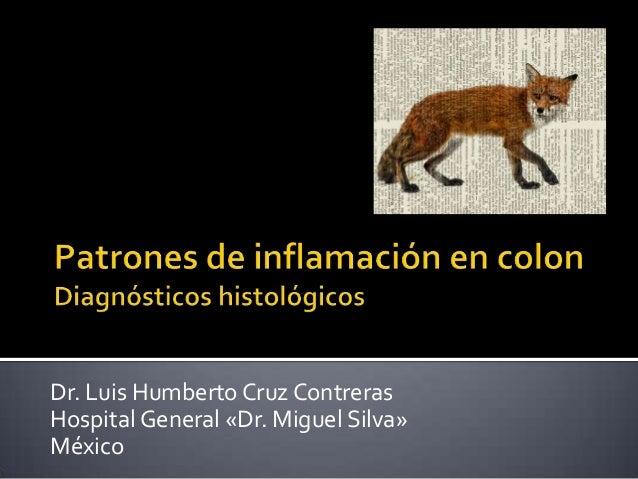 Dr. Luis Humberto Cruz ContrerasHospital General «Dr. Miguel Silva»México