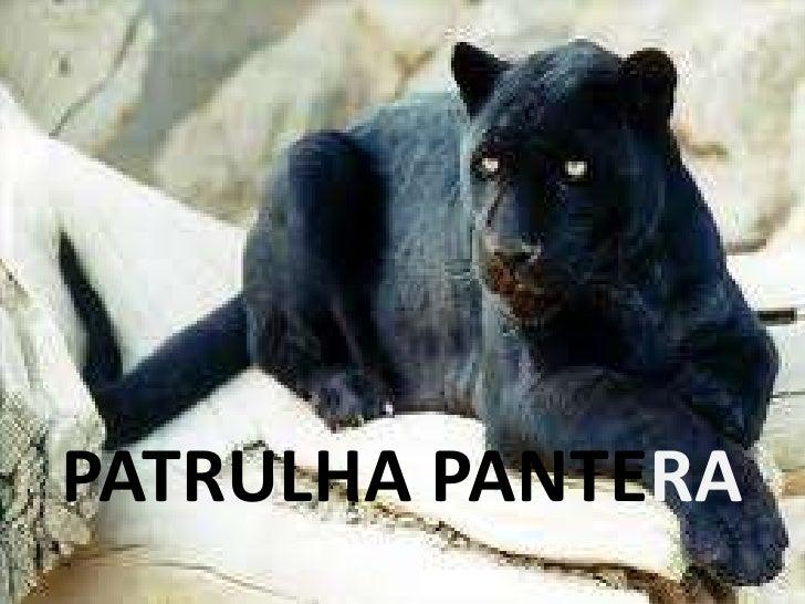 PATRULHA PANTERA