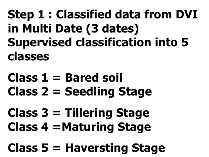 Step 1 : Classified data from DVI in Multi Date (3 dates) Supervised classification into 5 classes  Class 1 = Bared soil  ...
