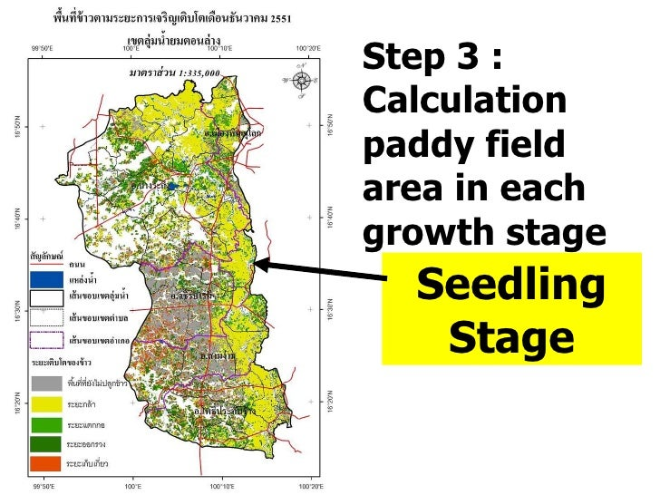 Step 3 : Calculation paddy field area in each growth stage Seedling Stage