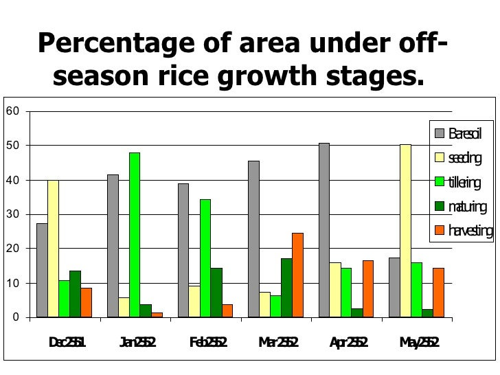 Percentage of area under off - season rice growth stages .
