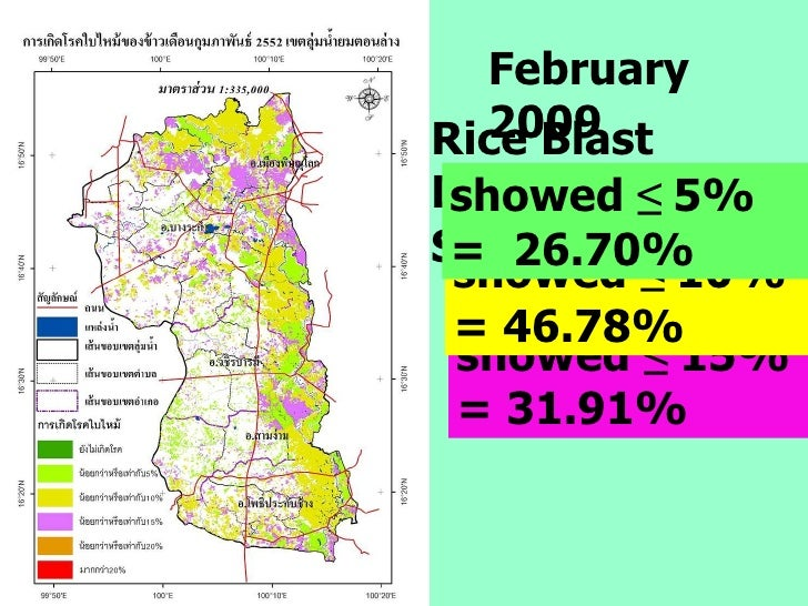 showed  ≤  15%   = 31.91% February 2009 showed  ≤  10%   = 46.78% Rice Blast Disease Severity showed  ≤  5%   =  26.70%