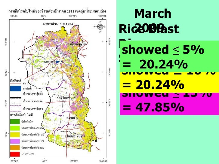 Rice Blast Disease Severity showed  ≤  15% = 47.85% showed ≤ 10% = 20.24%  March 2009 showed  ≤  5%   =  20.24%