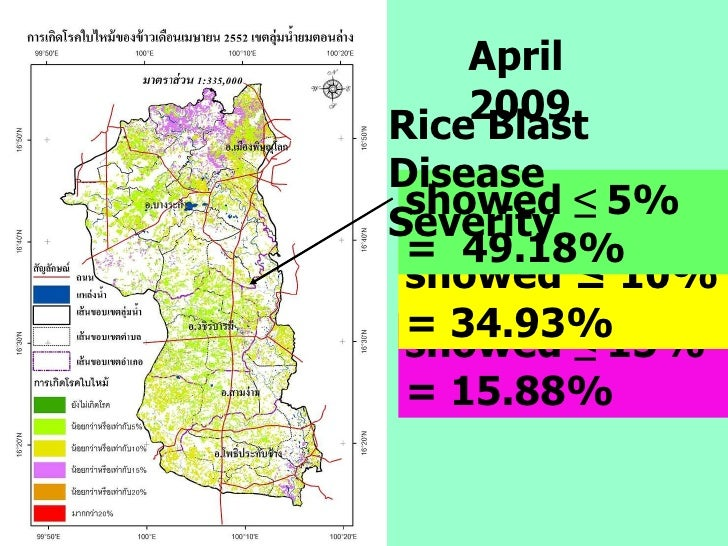 April 2009 showed  ≤  15% = 15.88% showed ≤ 10% = 34.93%  showed  ≤  5%   =  49.18% Rice Blast Disease Severity