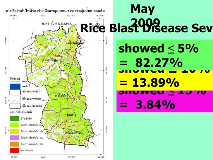 May 2009 showed  ≤  15% =  3.84% showed ≤ 10% = 13.89%  showed  ≤  5%   =  82.27% Rice Blast Disease Severity