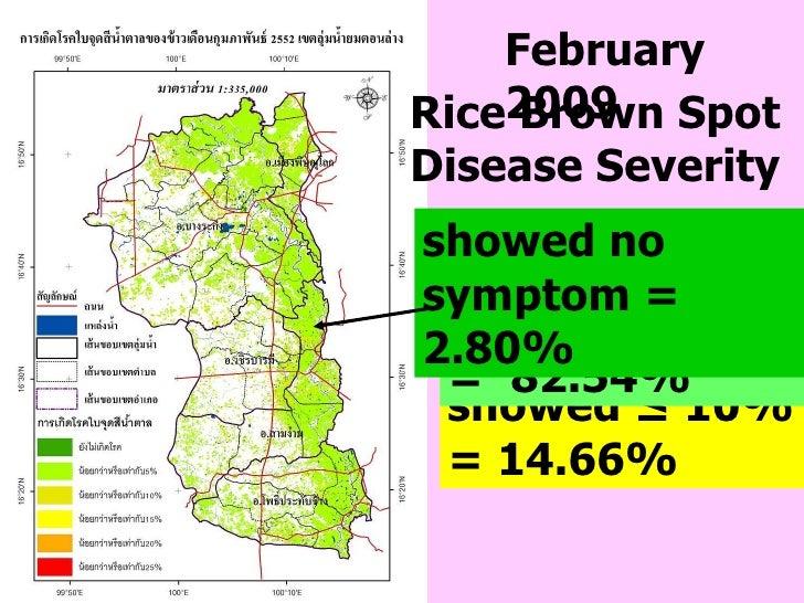 February   2009 showed ≤ 10% = 14.66%  showed  ≤  5%   =  82.54% Rice Brown Spot Disease Severity showed no symptom = 2.80%