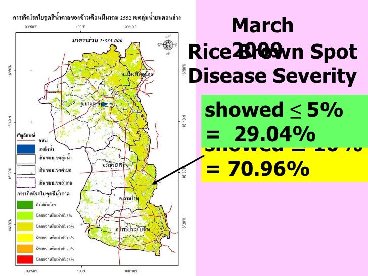 March 2009 showed ≤ 10% = 70.96%  showed  ≤  5%   =  29.04% Rice Brown Spot Disease Severity