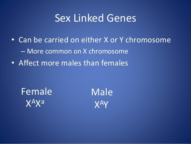X-Linked Disorders Disorder Genetics Characteristics X-Linked Recessive Inheritance Duchenne muscular dystrophy mutation i...