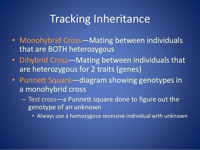 Tracking Inheritance • Monohybrid Cross—Mating between individuals that are BOTH heterozygous • Dihybrid Cross—Mating betw...
