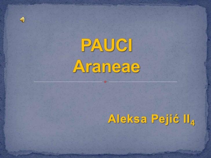 Aleksa Pejić II 4