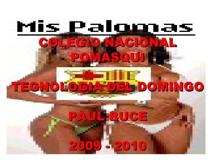 COLEGIO NACIONAL POMASQUI TEGNOLOGIA DEL DOMINGO PAUL BUCE 2009 - 2010