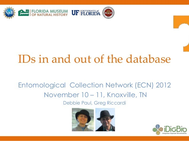 IDs in and out of the database Entomological Collection Network (ECN) 2012 November 10 – 11, Knoxville, TN Debbie Paul, Gr...