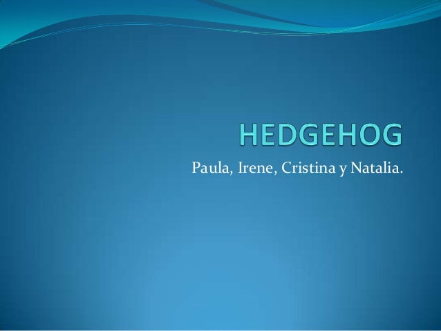 Paula, Irene, Cristina y Natalia.