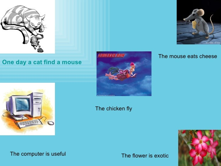 One day a cat find a mouse  The mouse eats cheese  The chicken fly The computer is useful The flower is exotic