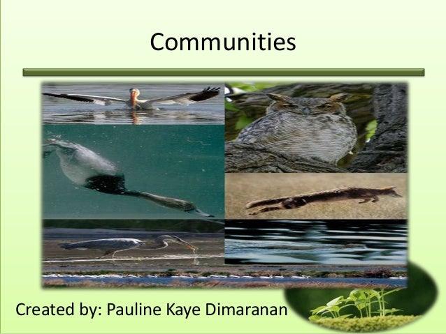 CommunitiesCreated by: Pauline Kaye Dimaranan