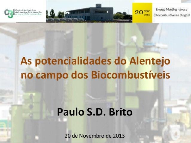 As potencialidades do Alentejo no campo dos Biocombustíveis Paulo S.D. Brito 20 de Novembro de 2013
