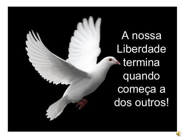 A nossa Liberdade termina quando começa a dos outros!