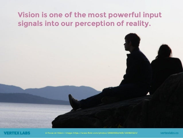 Vision is one of the most powerful input signals into our perception of reality. A Focus on Vision • Image: https://www.fl...