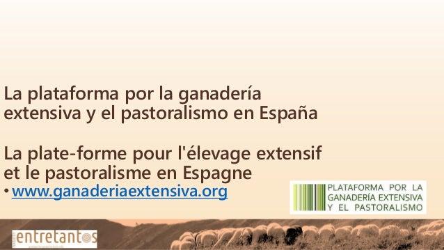 La plataforma por la ganadería extensiva y el pastoralismo en España La plate-forme pour l'élevage extensif et le pastoral...