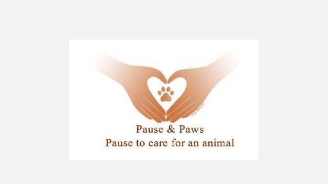 Pause for paws powerpoint