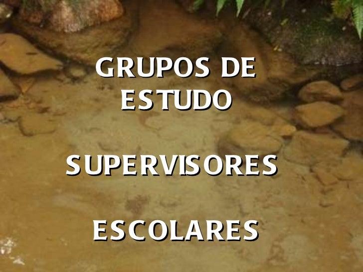 GRUPOS DE ESTUDO SUPERVISORES  ESCOLARES