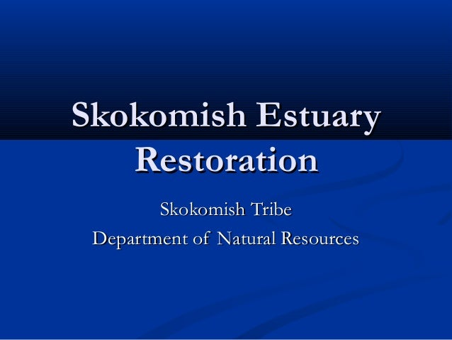 Skokomish EstuarySkokomish Estuary RestorationRestoration Skokomish TribeSkokomish Tribe Department of Natural ResourcesDe...