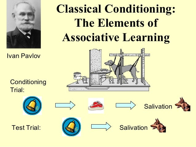 Classical Conditioning:                   The Elements of                 Associative LearningIvan Pavlov Conditioning Tri...