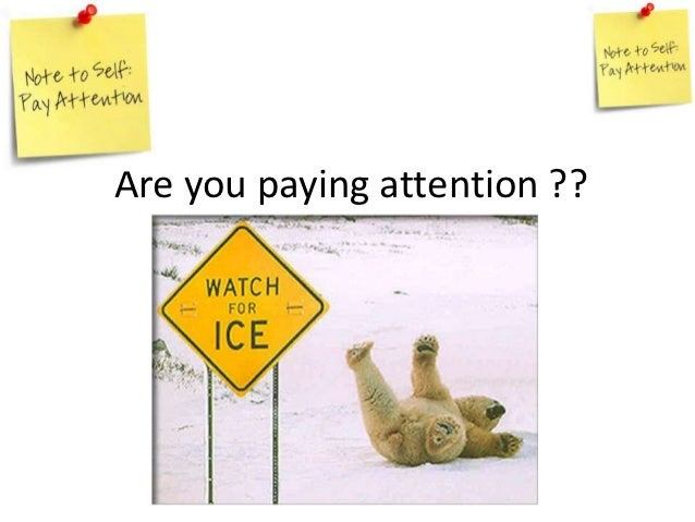 Are you paying attention ??