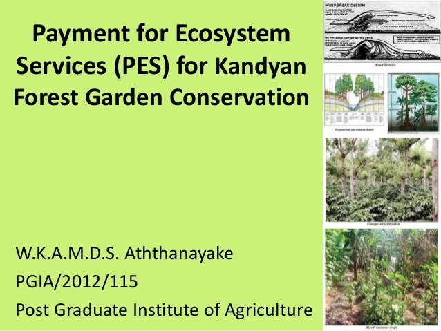 Payment for Ecosystem Services (PES) for Kandyan Forest Garden Conservation W.K.A.M.D.S. Aththanayake PGIA/2012/115 Post G...