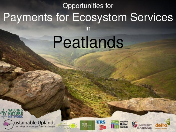 Opportunities forPayments for Ecosystem Services                 in        Peatlands