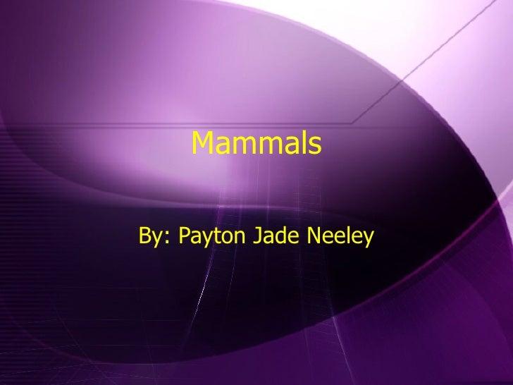 Mammals By: Payton Jade Neeley