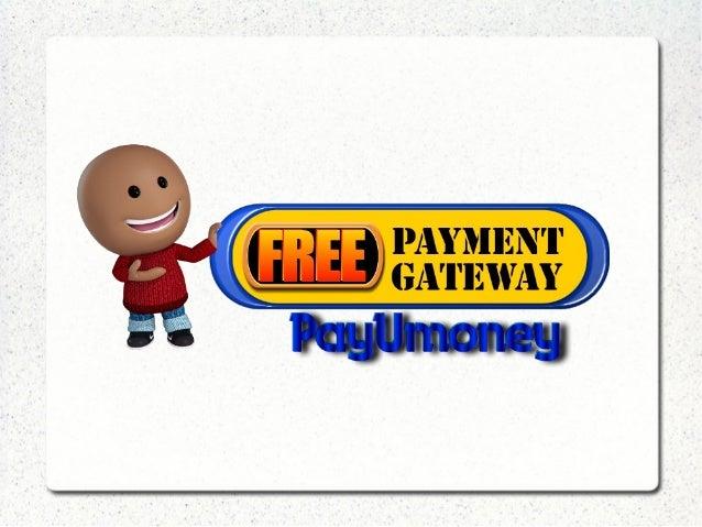 payment gateway business plan pdf