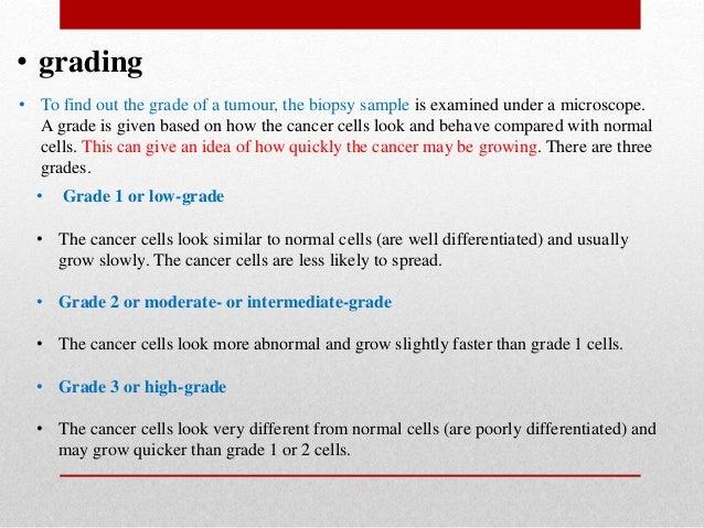 t cells vs b cells