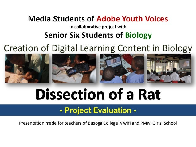 Media Students of Adobe Youth Voices in collaborative project with Senior Six Students of Biology Creation of Digital Lear...