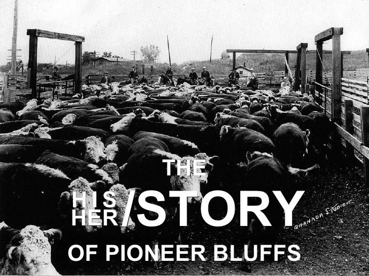 /STORY H   I   S HER OF PIONEER BLUFFS THE