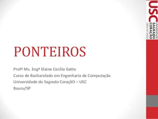 PONTEIROS Profª Ms. Engª Elaine Cecília Gatto Curso de Bacharelado em Engenharia de Computação Universidade do Sagrado Cor...