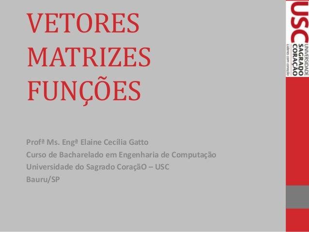 VETORES MATRIZES FUNÇÕES Profª Ms. Engª Elaine Cecília Gatto Curso de Bacharelado em Engenharia de Computação Universidade...