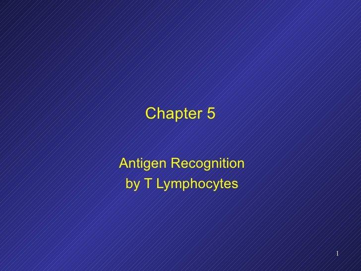 Chapter 5 Antigen Recognition by T Lymphocytes