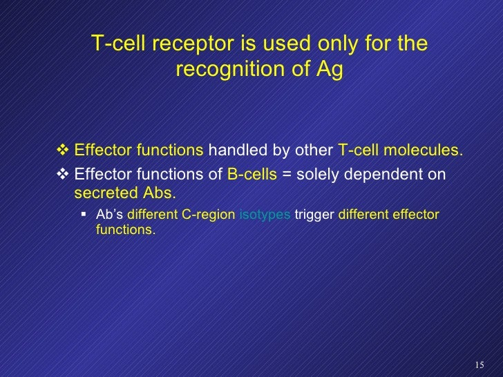 T-cell receptor is used only for the recognition of Ag <ul><li>Effector functions  handled by other  T-cell molecules. </l...