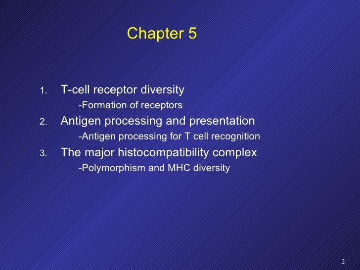 Chapter 5 <ul><li>T-cell receptor diversity </li></ul><ul><ul><li>-Formation of receptors </li></ul></ul><ul><li>Antigen p...