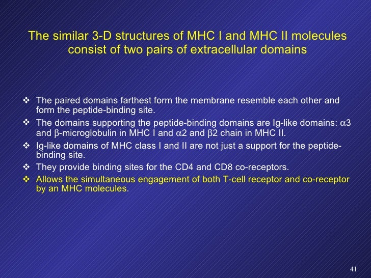 The similar 3-D structures of MHC I and MHC II molecules consist of two pairs of extracellular domains <ul><li>The paired ...